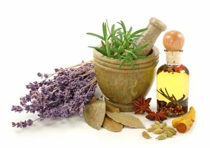 naturopathic doctors,naturopathic remedies,naturopathic cure,doctor of naturopathy,natural medicine doctor,holistic doctor,doctor of nature,doctors of nature,holistic cure,holistic treatment,holistic healing