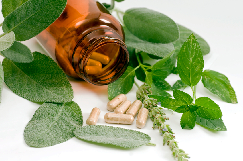 Naturopathy : Holistic Lifestyles Guide